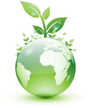 Conselho da Mulher Executiva do Simespi promove evento gratuito da área ambiental